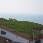 Grass Green Roof Solutions