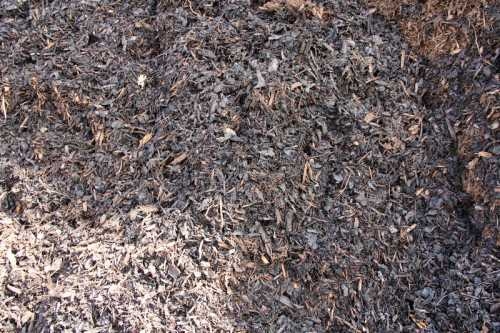 Medium Grade Bark Mulch | Specialist Soil Mixes